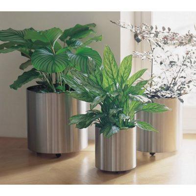 11 Plant Pots Online For 2019